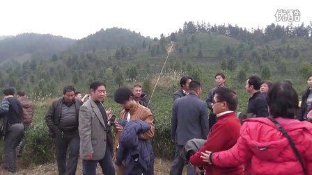 宝坛有机香茶园-香港东宸集团家人参观7