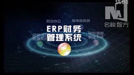 粤电集团信息中心年度总结汇报专题