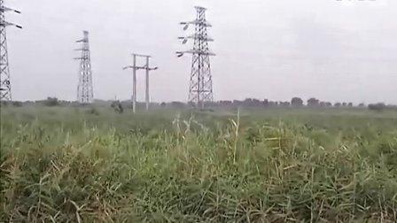 津南区水务局不作为,导致棉农损失240亩棉花