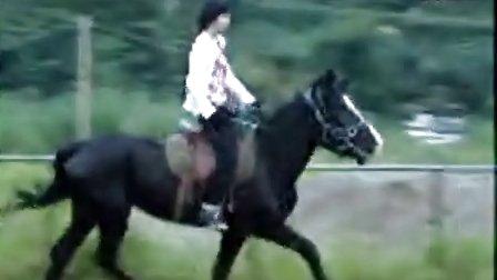 国内马场骑马