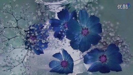[老白]Blue Are The Dreams 蓝色的梦 - OCARINA