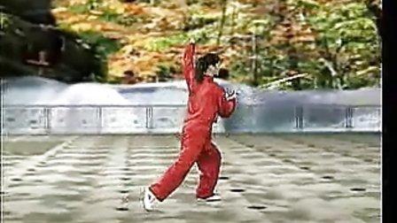 吴阿敏四十二式太极剑竞赛套路背向演示