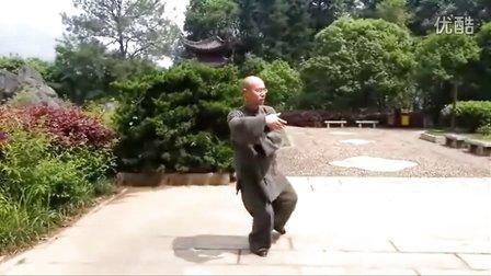 正宗杨氏太极拳85式  永年李占英 (福建版)