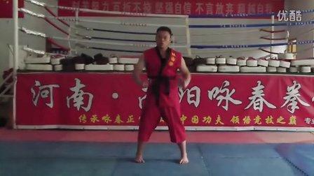 南阳咏春拳
