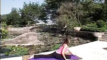 印度瑜伽教学(2)
