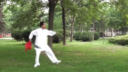 石家庄姚老师36式太极刀整套演练