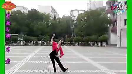 高安子君广场舞-红山果(附背面分解与演示) 标清