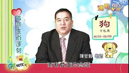 台湾中华电信MOD姓名大师陈哲毅2013年6月3日~6月9日生肖运势(狗)
