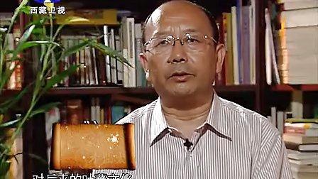 008西藏诱惑20110907探索古象雄文字之谜