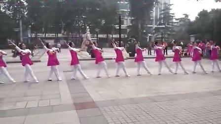 河北电视台报道泰迪健身球操的纪录片1