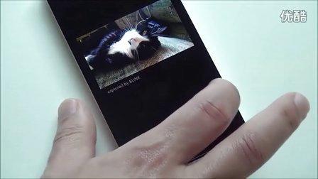 Bink 2.0 - Demonstration For Windows Phone 8