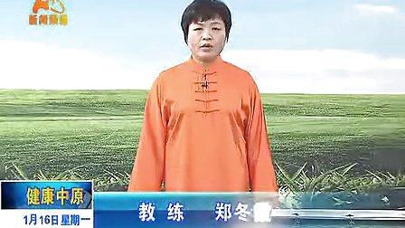 郑冬霞陈氏太极拳老架一路教学16