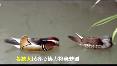 中国梦-雷晓峰曲、红霞唱 (2)