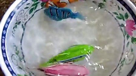 新奇特玩具 会游泳的小鱼 仿真鱼 电子宠物鱼 亲子洗澡玩具