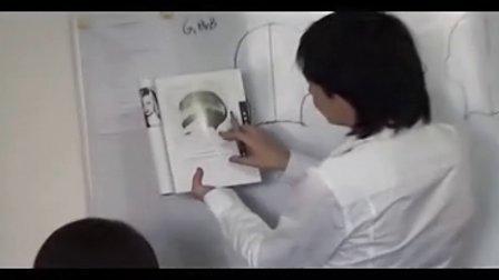 经典技术 沙宣染发技术 最新烫发技术视频