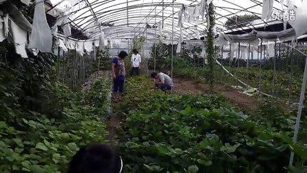 看看寸土寸金韩国的农村2억 농사토지