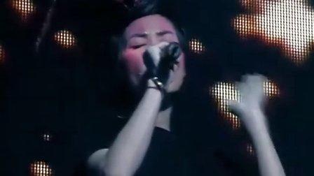 王菲2004全面体演唱会 (1)