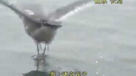 山东江苏之旅音乐风光版