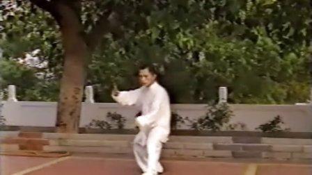 太极拳-武术-太極拳-單人練習推手基本功擠按踩八卦步.rmvb