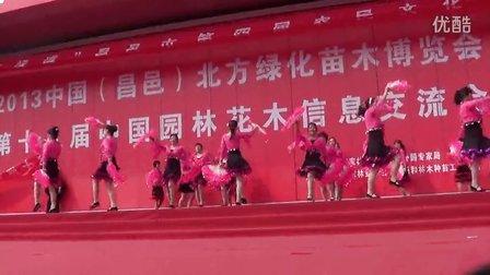 旗元广场舞蹈队表演《秧歌舞》