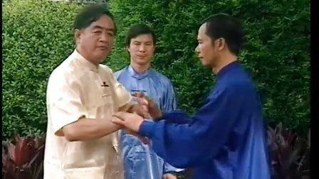 太极推手初级教程杨式太极拳第五代传人李正大师讲解演练2