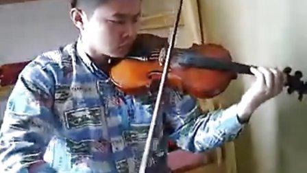 菊花台(小提琴)