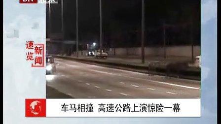 车马相撞 高速公路上演惊险一幕.avi