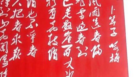 葫芦丝独奏——《月光下的凤尾竹》