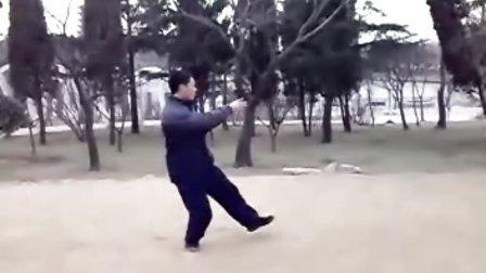 杨氏传统太极拳