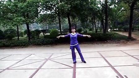 常德临江公园活力广场舞-桑巴舞《LA ISLA BONITA》舞蹈和教学