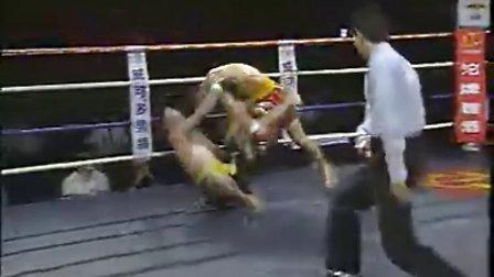 2001年散打王集锦