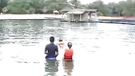 辜思历-与海豚共游