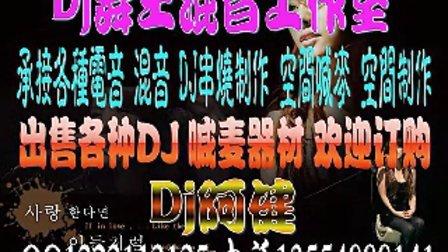 dj阿健 2010最新伤感情歌串烧