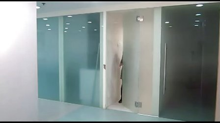 BESTKO 瑞高太极芯液动玻璃夹