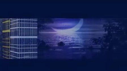 《城里的月光》电子萨克斯演奏:夜鹰