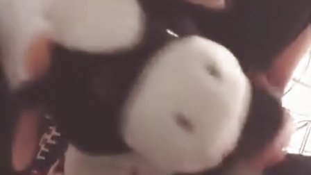 Instagram Video 62 moo moo video