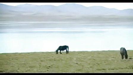 《牧羊山歌》葫芦丝演奏:夜鹰