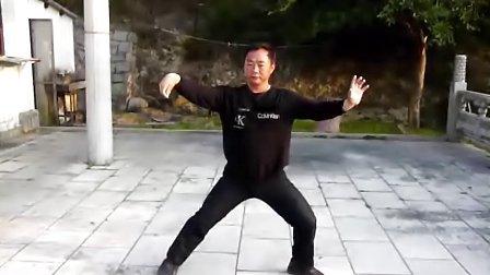温州洞头县武术协会吕子攀老师的杨氏太极拳