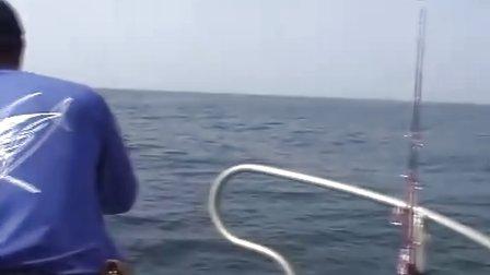 韩国铁板路亚jigging中国海钓网之powerjig在韩国