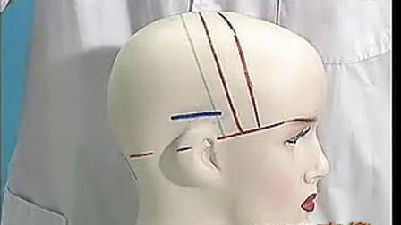 中医头部按摩疗法.二十种常见病的治疗