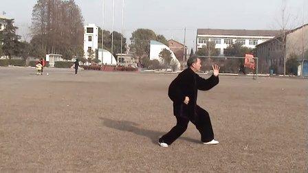杨氏85式太极拳