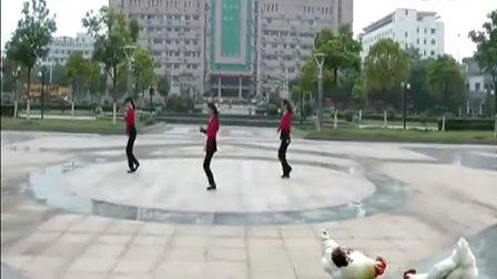 广场舞中国范儿-广场舞教学节目