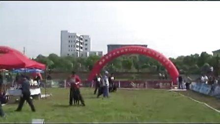 江西罗威纳比赛