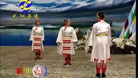学跳藏族舞《翻身农奴把歌唱》民族舞蹈教学_标清