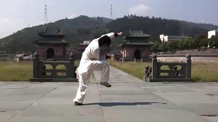 武当功夫王音华:玄功拳一路