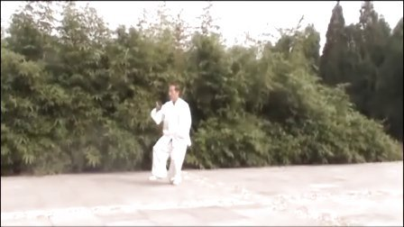 40式杨式太极拳竞赛套路