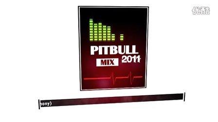 【段志超世界音乐】哈哈!嘻哈舞曲天王 狗哥Pitbull2011众多金曲大混音