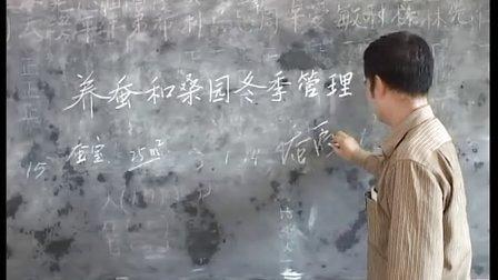 种桑养蚕技术培训---罗城科技局科普惠农专题片3