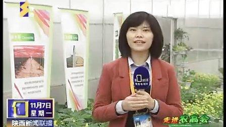 陕西电视台宣传报道中国菜票网杨凌无公害蔬菜基地和现代农业合作园