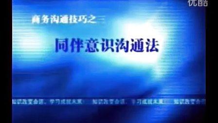 吴娟瑜 商务沟通技巧2